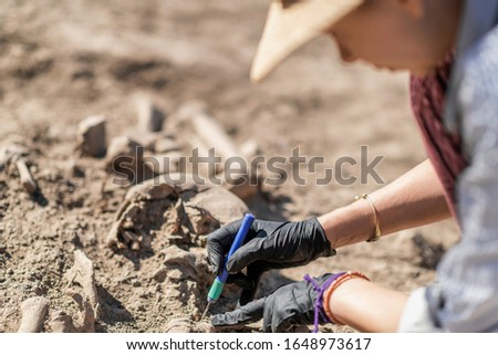 Archaeology - excavating ancient human remains with digging tool kit set at archaeological site.  Royalty-Free Stock Photo #1648973617