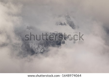 Photo taken in the french Alps in cloudy and windy conditions, which set a ferric atmosphere, with mountains emerging from the clouds, sea of clouds, forests, trees, black and white. #1648974064
