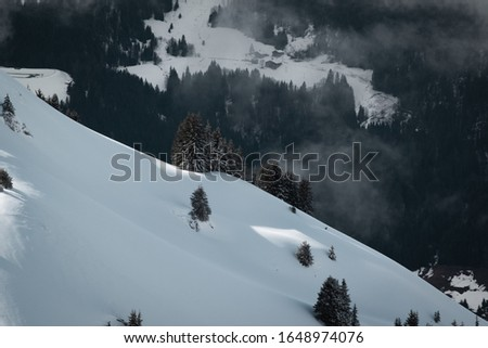 Photo taken in the french Alps in cloudy and windy conditions, which set a ferric atmosphere, with mountains emerging from the clouds, sea of clouds, forests, trees, black and white. #1648974076