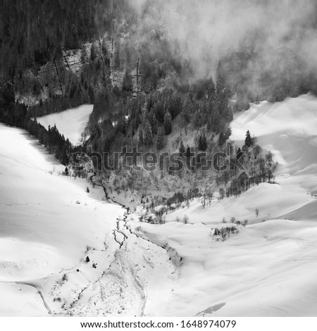 Photo taken in the french Alps in cloudy and windy conditions, which set a ferric atmosphere, with mountains emerging from the clouds, sea of clouds, forests, trees, black and white. #1648974079