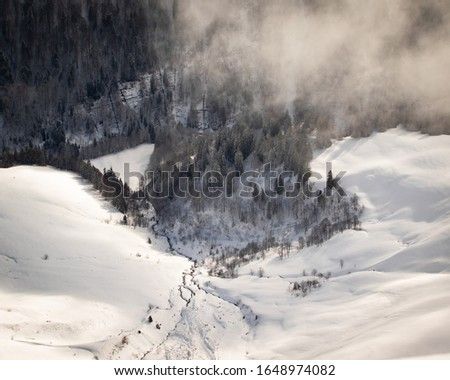 Photo taken in the french Alps in cloudy and windy conditions, which set a ferric atmosphere, with mountains emerging from the clouds, sea of clouds, forests, trees, black and white. #1648974082