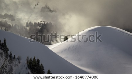 Photo taken in the french Alps in cloudy and windy conditions, which set a ferric atmosphere, with mountains emerging from the clouds, sea of clouds, forests, trees, black and white. #1648974088