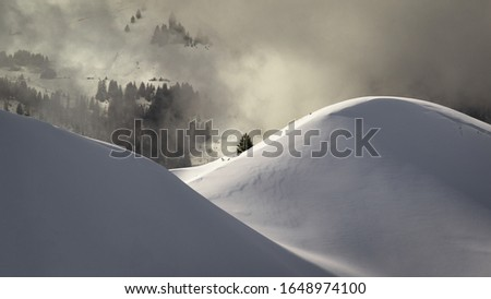 Photo taken in the french Alps in cloudy and windy conditions, which set a ferric atmosphere, with mountains emerging from the clouds, sea of clouds, forests, trees, black and white. #1648974100