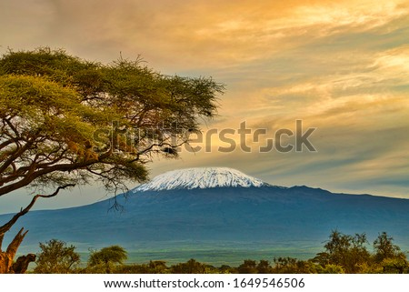 Pictures of the snow-covered Kilimanjaro in Tanzania