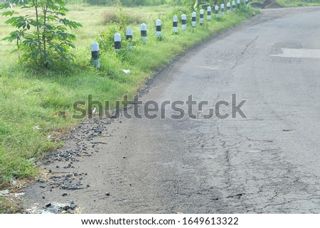 Dirt Road beside the Grass in the Morning #1649613322