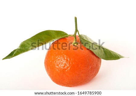 Portuguese clementine on white background #1649785900