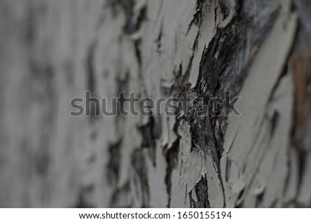 Detail of old, weathered chipboard #1650155194
