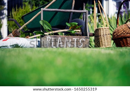 Box labeled 'plants' in garden beside wheelbarrow #1650255319