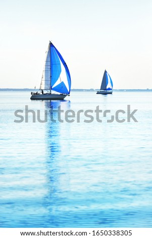Sailing yacht regatta. Modern sailboats racing with blue spinnaker sails. Clear summer day. Kiel, Germany #1650338305