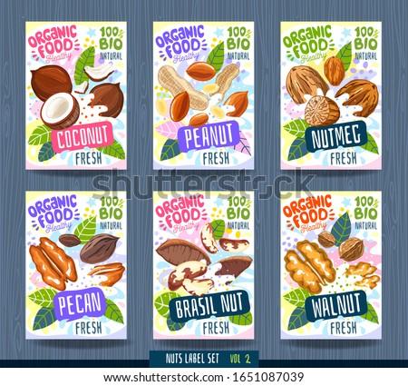 Abstract splash Food label template. Nuts, herbs, fruits, spices, package design. Coconut, peanut, nutmeg, pecan, brasil nut, walnut. Organic fresh. Vector illustration Royalty-Free Stock Photo #1651087039