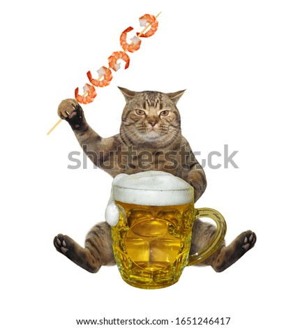 The beige cat is eating a grilled skewer shrimp and drinking beer from a mug. White background. Isolated.