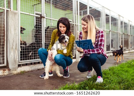 Young woman with worker choosing which dog to adopt from a shelter. Royalty-Free Stock Photo #1651262620