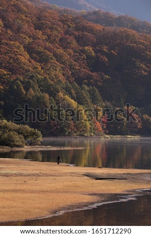 A lonely photographer is taking the photo of the autumn leaves in the morning at Hibara lake. #1651712290