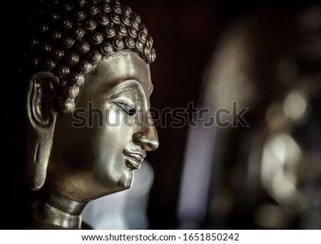 Selective focus  close-up shots of of the Buddha images with soft light and layout design for a beautiful religious background.