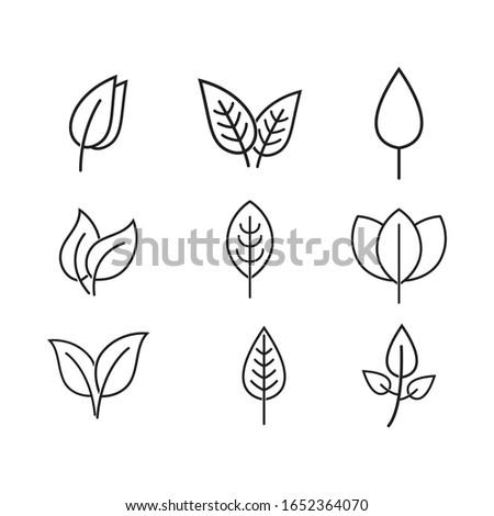 Leaf line logo vector template illustration #1652364070
