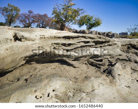 """Miraculous fossils left behind by an explosion of an estimated 1.8 million years ago. A river surrounded by fossils. The name of the miracle river is """"ASAKAWA"""". Valuable fossils are metasequoia trees. #1652486440"""