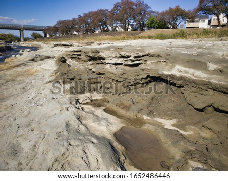 """Miraculous fossils left behind by an explosion of an estimated 1.8 million years ago. A river surrounded by fossils. The name of the miracle river is """"ASAKAWA"""". Valuable fossils are metasequoia trees. #1652486446"""