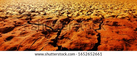 Mars ground photos. Mars one cracked red soil.