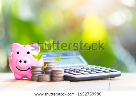 Piggy bank and The coin is placed on the side. Tree placed on coins. planning savings money of coins to buy a home concept for property, mortgage and real estate investment.to buy a house. #1652759980