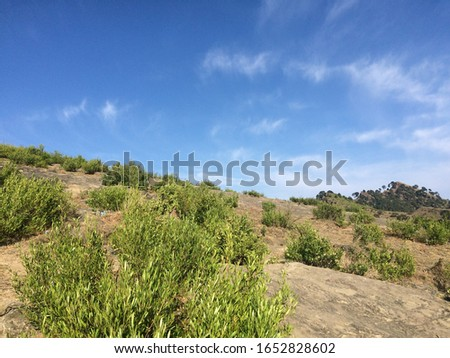clear blue sky view from earth