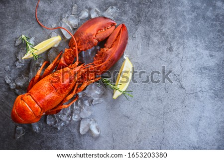 Fresh lobster food on a black plate background / red lobster dinner seafood with herb spices lemon rosemary served table and ice in the restaurant gourmet food healthy boiled lobster cooked #1653203380