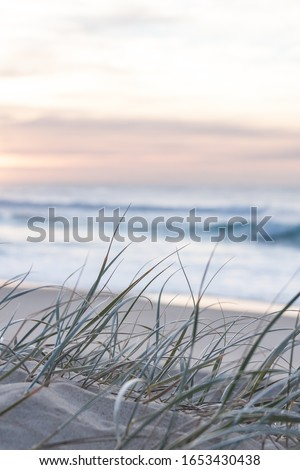 sunrise light on white sand beach with dune grass in Australia with turquoise surf waves of the pacific ocean  Royalty-Free Stock Photo #1653430438