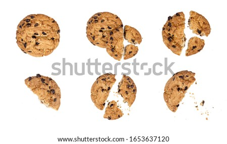 Close up of chocolate chip cookie pieces with crumbs set collection isolated on white background #1653637120