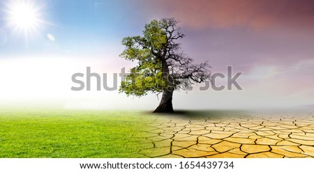 Climate change - landscape with dry earth, Meadow and oak tree #1654439734