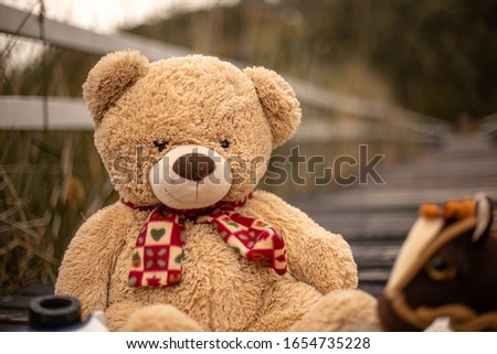 picture of child teddy bear and other toys