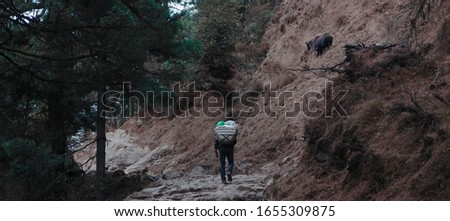 The Tibetan mover carries supplies on the mountain. Above him runs a mountain goat. #1655309875