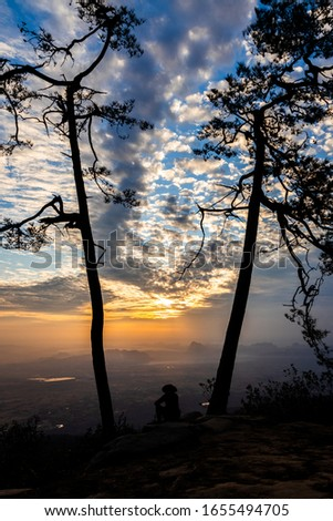 the man sitting between two tree with sunrise background #1655494705