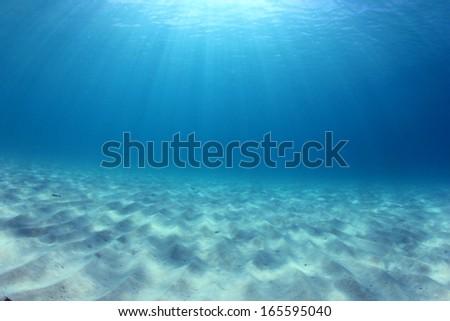 Underwater Ocean background #165595040