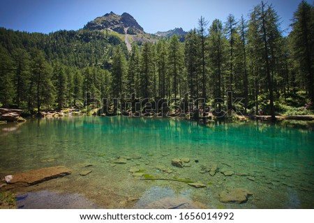 A little lake with emerald green water in the woods of the Gran Paradiso National Park, Valle d'Aosta Italy  #1656014992