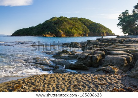 Goat Island Marine Reserve near Leigh North Island New Zeland Royalty-Free Stock Photo #165606623