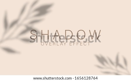 Shadow overlay effect. Transparent soft light and shadows from branches, plant, foliage and leaves. Mockup of transparent leaf shadow overlay effect and natural lightning. Vector mock up gradient mesh #1656128764