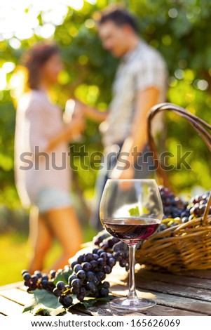 grape and wine composition in vineyard #165626069