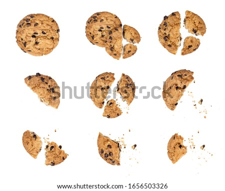 Close up of chocolate chip cookie pieces with crumbs set collection isolated on white background #1656503326
