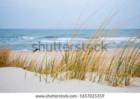 Beautiful rough blue sea with waves and sandy beach with reeds and dry grass among the dunes, travel in summer and holidays concept Royalty-Free Stock Photo #1657025359