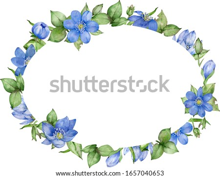 Watercolor floral frame with first spring blue flower - hepatica. Wedding invitation and birthday card. Hand-drawn watercolor illustration.