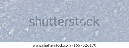 The texture of freshly fallen snow. Christmas template for design. Clearly visible individual snowflakes. Winter background. #1657526170