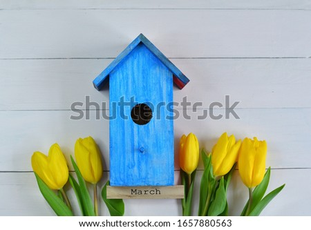 yellow tulips and a bright blue birdhouse on a pink background. picture for packages.Spring mood. Spring card for Mother's Day, Women's Day. Template greeting card for Valentine's Day.copy space.