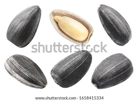Set of sunflower black seeds, isolated on white background Royalty-Free Stock Photo #1658415334