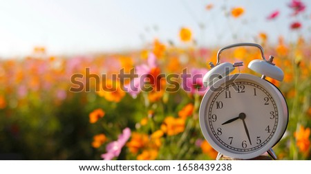 White alarm clock With freshly colored floral backdrop, blurred backdrop #1658439238