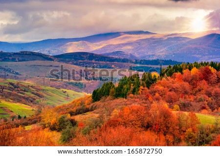 autumn hillside with pine and Colorful foliage aspen trees near valley #165872750