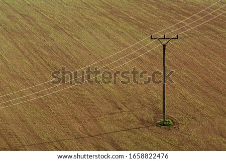 Electric posts on a brown field. A simple and minimalistic photo of a plowed field through which small poles of power lines pass. Three electrical wires on a brown field. #1658822476