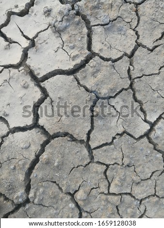 Surfaces and cracked surfaces of dehydrated soil #1659128038