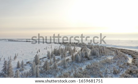 Winter Landscape of the forest-tundra, river bank, bird's eye view.Arctic Circle, tundra. Beautiful landscape of tundra from a helicopter.