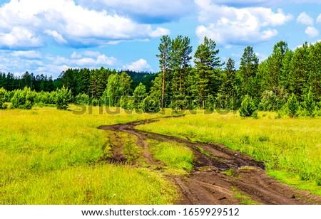 Summer green rural road landscape. Rural field road to forest. Summer rural road #1659929512