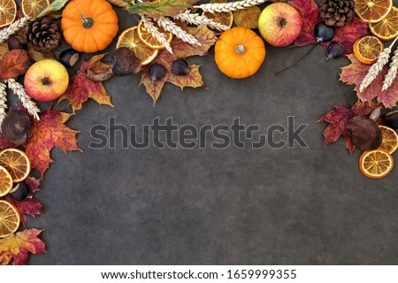 Autumn nature background border with food, flora and fauna on lokta paper background. Top view. Harvest festival theme. #1659999355