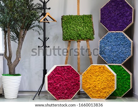 Ecology art. Green, purple and blue, red, yellow moss picture on wall